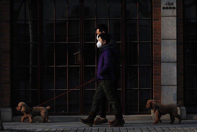 ICCJ, decizie finala: Obligatia de a purta masca, complet LEGALA