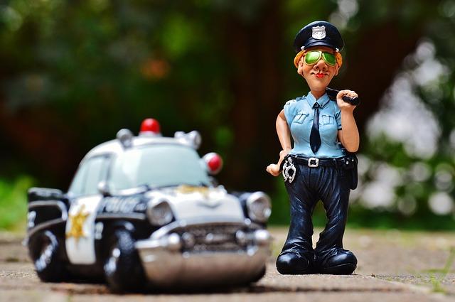 Politia Animalelor va fi infiintata prin OUG! Ce prevede proiectul