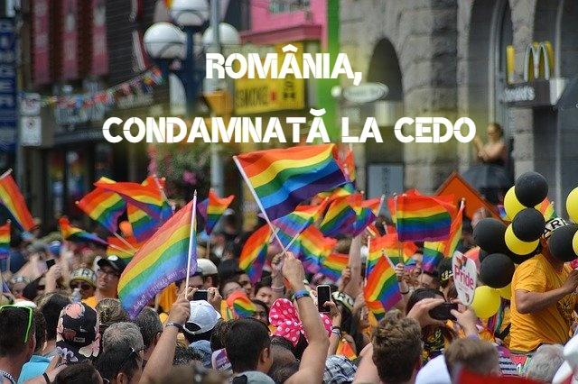 Romania, condamnata la CEDO pentru ca n-a schimbat cartea de identitate unor persoane transgender