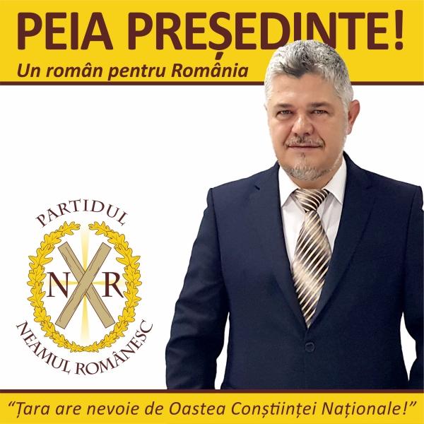 Candidati alegeri prezidentiale 2019 Ninel Peia